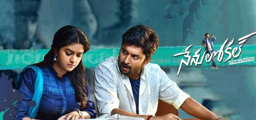 nenu local poster hd